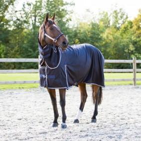 Paardendekens - Fleece- en Zweetdekens - kopen - B Vertigo Perry Combo Zweetdeken