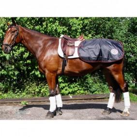 Paardendekens - Uitrijdekens - Nierdekens - kopen - Back on Track Lendedeken