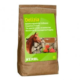Onderhoud en Verzorging - Paardensnoepjes en Likstenen - kopen - Bio-beloningsbrok Aardbei