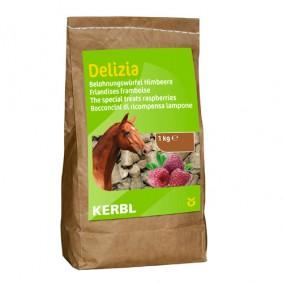 Onderhoud en Verzorging - Paardensnoepjes en Likstenen - kopen - Bio-beloningsbrok Framboos