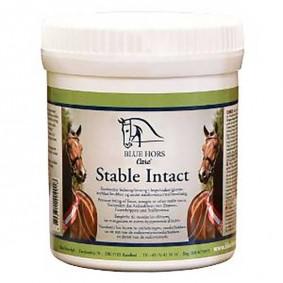 Onderhoud en Verzorging - Wondverzorging - kopen - Blue Horse Stable Intact 500 g