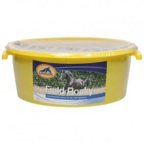 Overig - Paardensport Merken - Cavalor - Supplementen - kopen - Cavalor Field Rocky Likschalen 15 kg