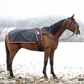 Paardendekens - Uitrijdekens - Nierdekens - kopen - Enstex quarter sheet w/ fleece lining, Swedish model