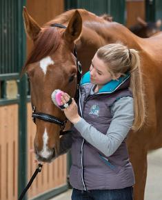 Vachtverzorging paard