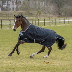 Bucas Anniversay Turnout Silk Feel 200gr Winterrug bestellen? Via Paardensportwebshop.nl