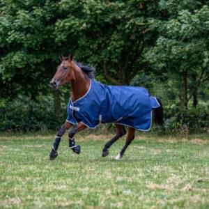 Bucas Freedom Turnout Light bestellen? Via Paardensportwebshop.nl