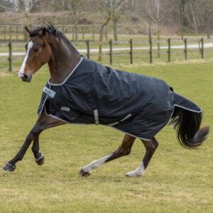 Bucas Anniversary Turnout 150gr Stay-Dry Winterdeken bestellen? Via Paardensportwebshop.nl
